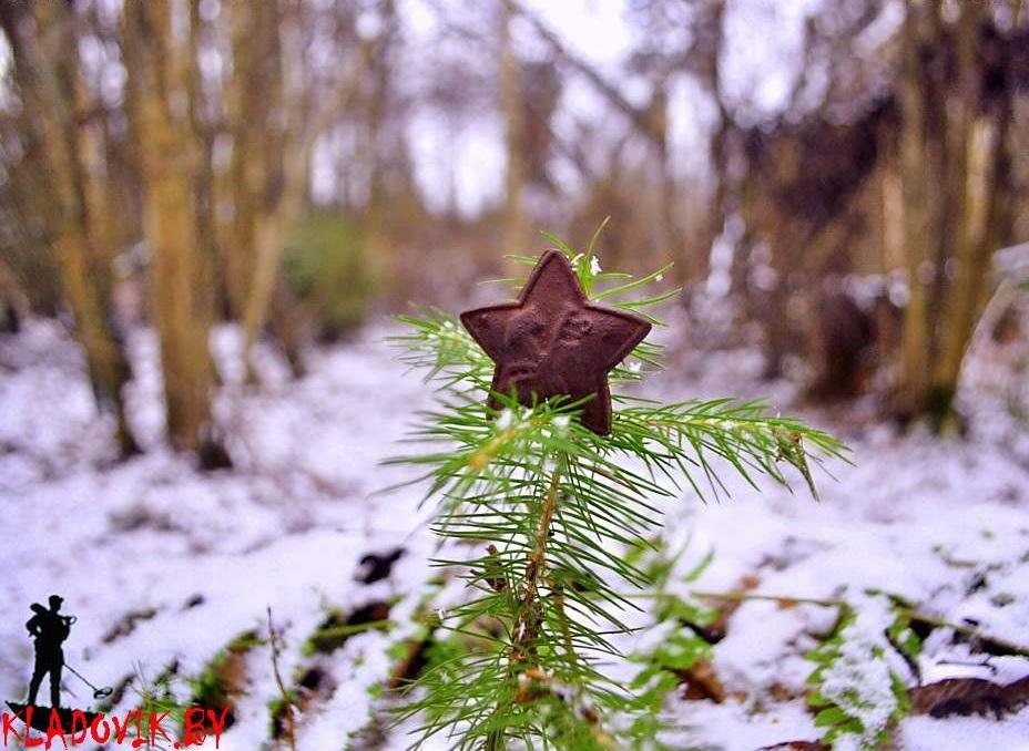 В лесной морозец